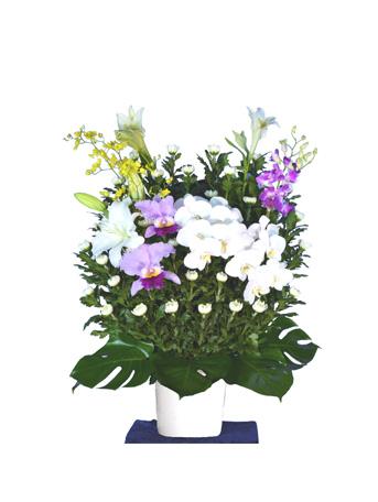 菊タイプ 供花